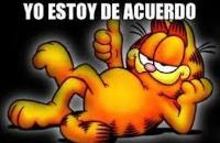 """Estoy de acuerdo! (Not """"I am agree."""")"""